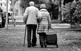 best shopping trolley for elderly